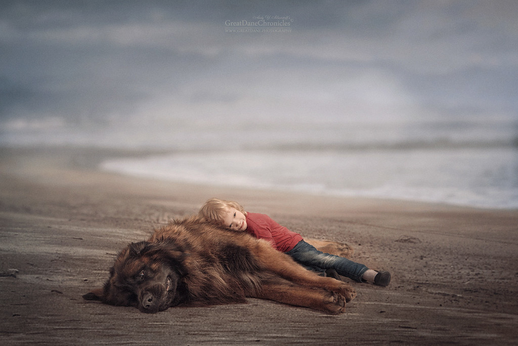 https://photos.smugmug.com/Prints/Little-Kids-and-their-Big-Dogs/i-j47rxcN/0/XL/GDC_3550GDCh-XL.jpg
