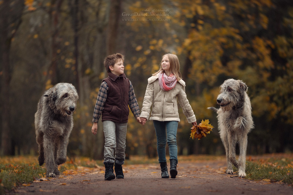https://photos.smugmug.com/Prints/Little-Kids-and-their-Big-Dogs/i-jVJZb4s/0/XL/GDC_4469GDCh-XL.jpg