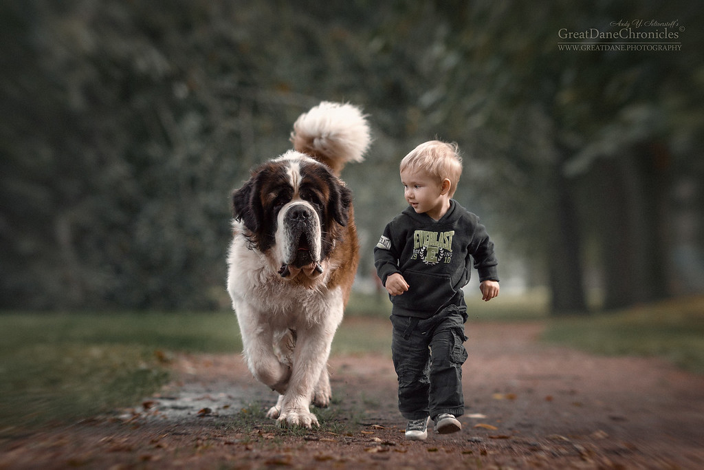 https://photos.smugmug.com/Prints/Little-Kids-and-their-Big-Dogs/i-jqk3sq2/0/XL/GDC_9692GDCh2-XL.jpg