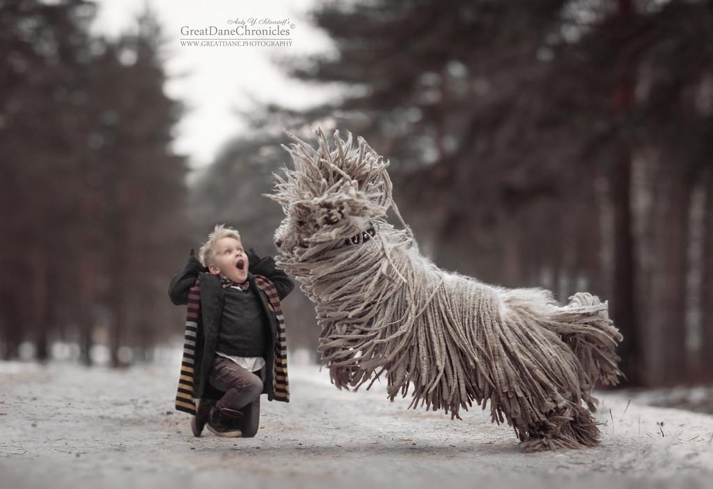 https://photos.smugmug.com/Prints/Little-Kids-and-their-Big-Dogs/i-pCdB4MW/0/XL/GDC42256GDCh-XL.jpg