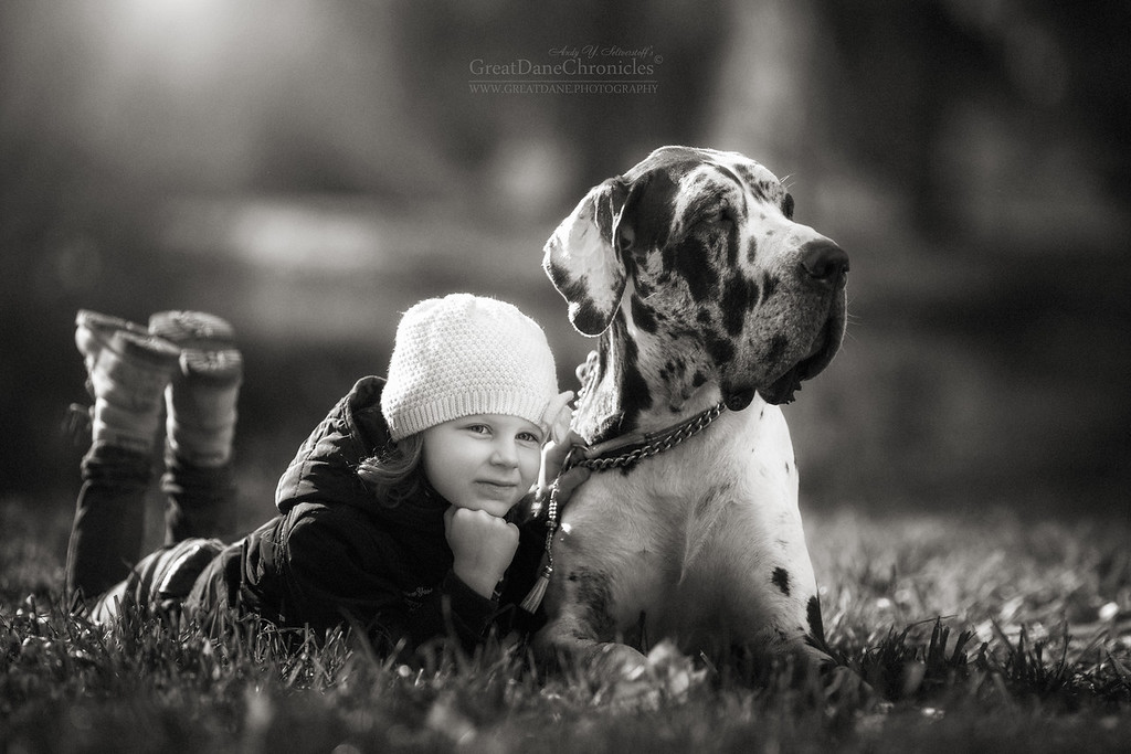 https://photos.smugmug.com/Prints/Little-Kids-and-their-Big-Dogs/i-pcKsVR8/0/XL/GDC_1897GDCh-XL.jpg