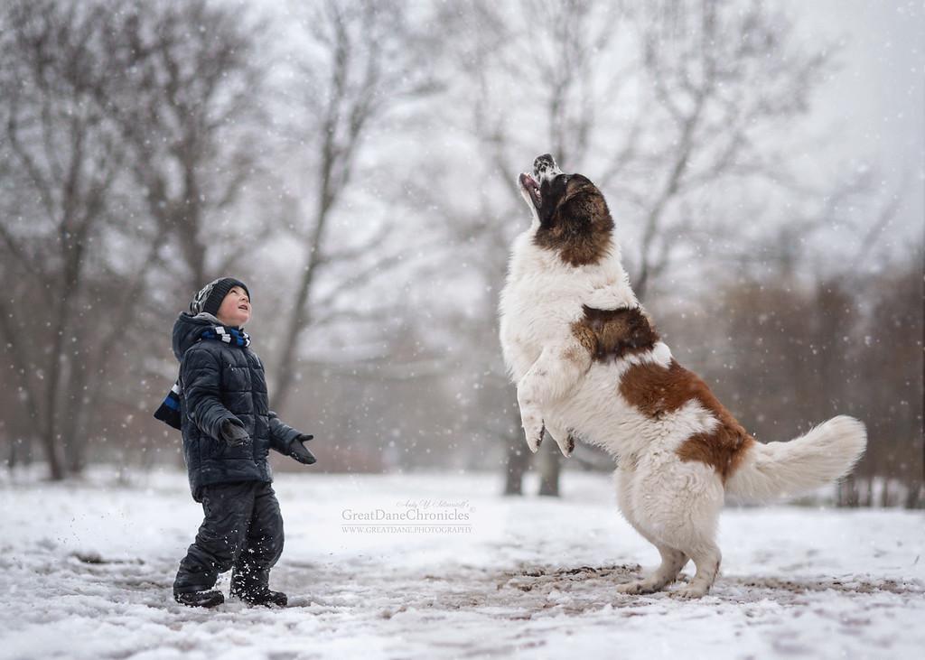 https://photos.smugmug.com/Prints/Little-Kids-and-their-Big-Dogs/i-rwWnrX7/0/XL/GDC_3680GDCh-XL.jpg