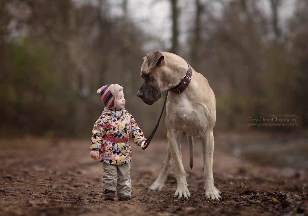 https://photos.smugmug.com/Prints/Little-Kids-and-their-Big-Dogs/i-sXgFBKP/0/XL/GDC_8172GDCh-XL.jpg