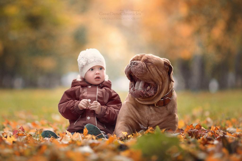 https://photos.smugmug.com/Prints/Little-Kids-and-their-Big-Dogs/i-wL2SxTL/0/XL/GDC_1311GDCh-XL.jpg
