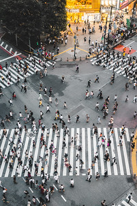 Times Square of Tokyo