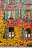 Swiss Autumn (Switzerland)