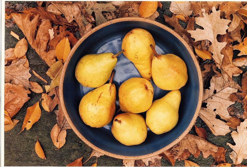 Pears, Still Life, Leaves, Autumn, Fall
