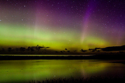 Covehead Northern Lights