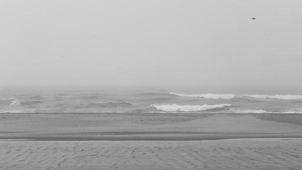 Ocean 20