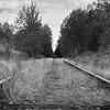Telegraph Road #1