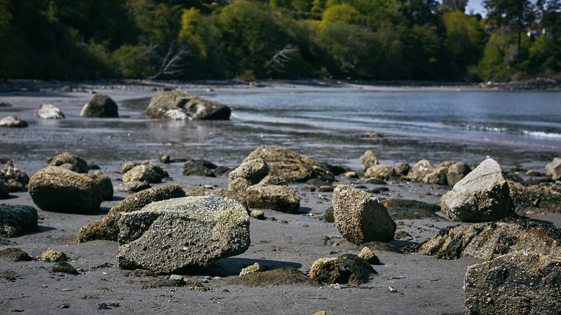Rocks at Arbutus