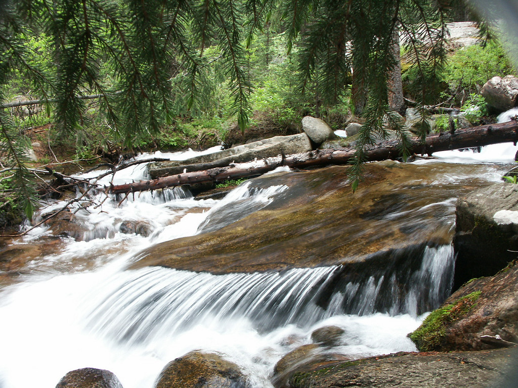 MY FAVORITE SPOT: High in the Rocky Mountains the spring fed creek offers a soothing sound as birds sing in the background.