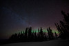 Star-filled sky and a hint of northern lights behind the trees. Fairbanks, Alaska.