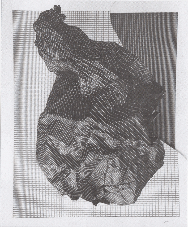 Black and white print of gridded lines, distortd and crumpled to form a vaguely geographic form.