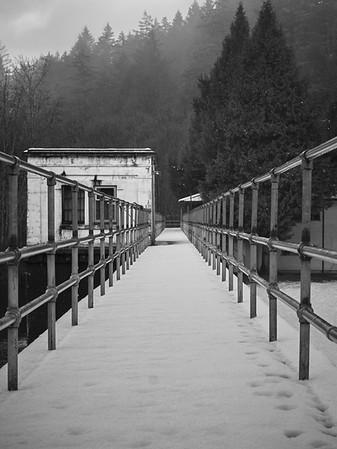 A Westcoast Winter Day in Monochrome