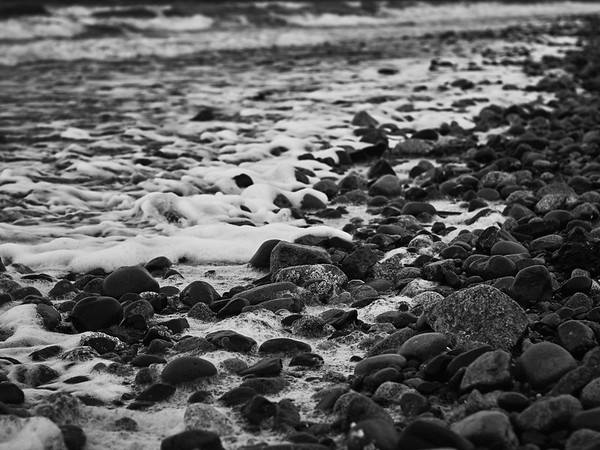 A Study of Texture in Monochrome - Barnacles & Bubbles