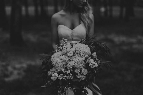 Taylor Elizabeth Photography - L-3678