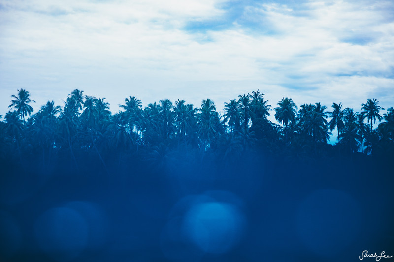 Sumatran Blues