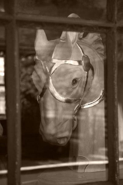 <center>CAROUSEL HORSE BLUES <p></p> 8x12 - $50 12x18 - $85 16x24 - $125 </center>