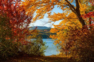 Autumn Lake Colors