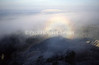 """Fog Bow"" in Black Elk Wilderness, Black Hills, S.D."