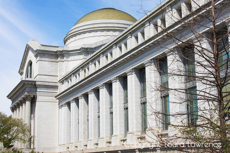 Smithsonian Museum of Natural History, Washington D.C.