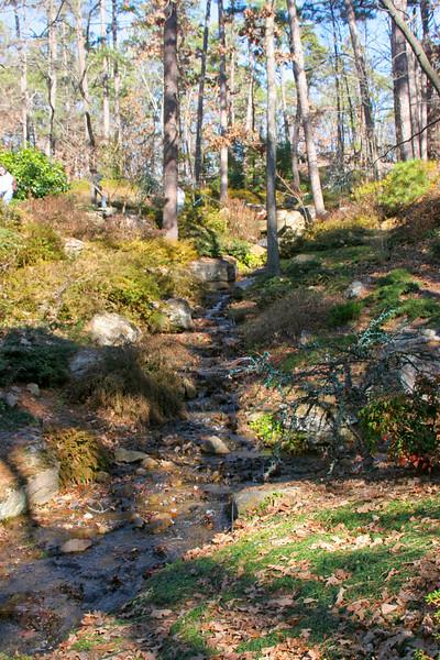12/29/05<br /> Garvan Woodland Gardens