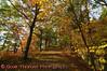 View 43: Autumn Color