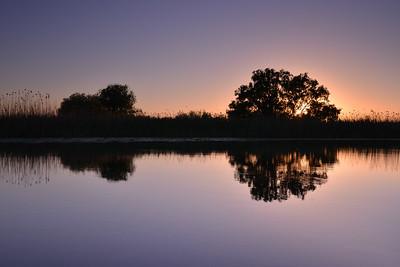 Reflexie la apus - Delta Dunarii