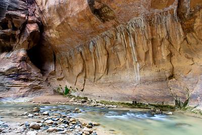 Zion's Weeping Rocks 2
