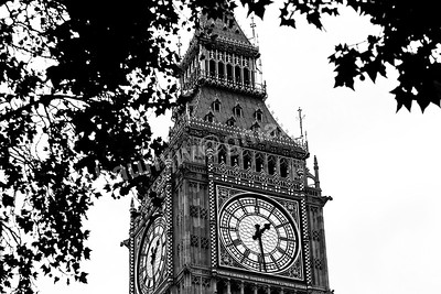The Clock face of Big Ben & the Elizabeth Tower seen through the trees.