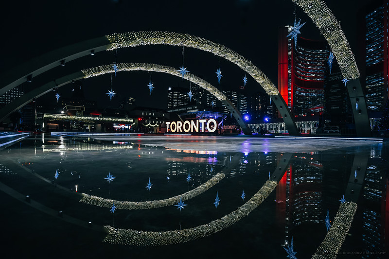 Holiday Reflections at City Hall