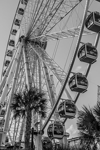 Myrtle Beach Skywheel In Black And White