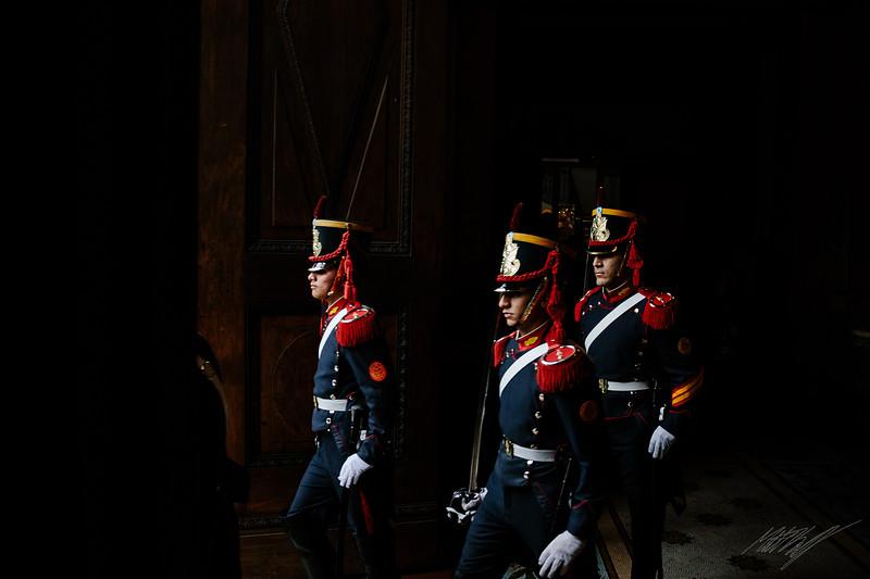 Los Grenaderos Argentinos