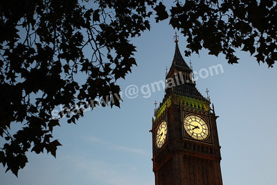 Big Ben and the Elizabeth Tower seen through trees,