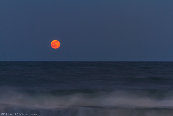 Strawberry Moon Over The Beach