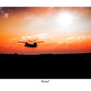 Code: FS-01 - Price:£19.99 - A3 Art Print Layout