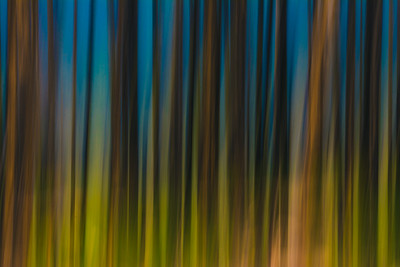 Abstract Aspens 2