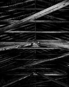 Mackenzie Bridge Roof B&W