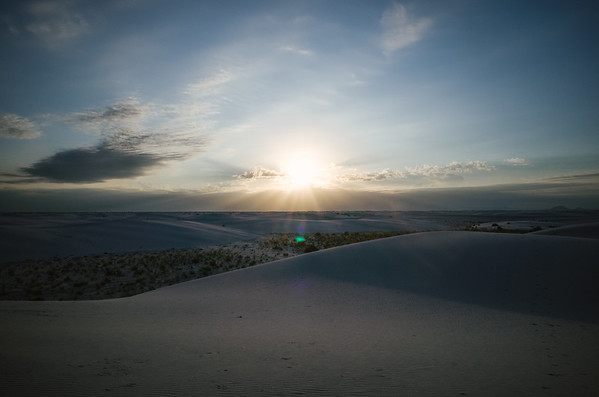 White Dune Sunrise // 2019