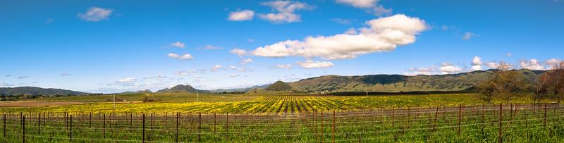 Edna Valley, California
