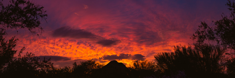 Papago Sunset