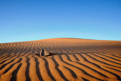 Ripples in the sand near Merzouga, Morocco.