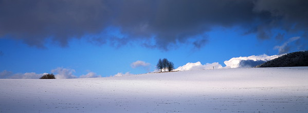 Snow covered field on a sunny winter day