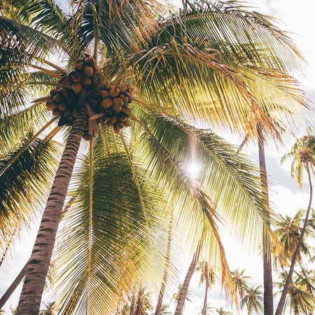Moloka'i, Hawaii