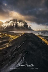 Sand dunes in golden light