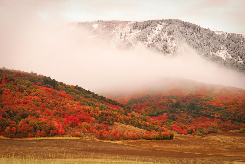 Mix of Seasons
