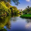 Lawai  River Through the Allerton Gardens
