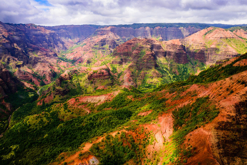 Waimea Canyon Seen from the Air