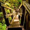 Marymere Falls Bridge (sunny day)